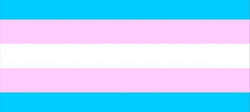 Transgender man sues loan company over sex bias claim