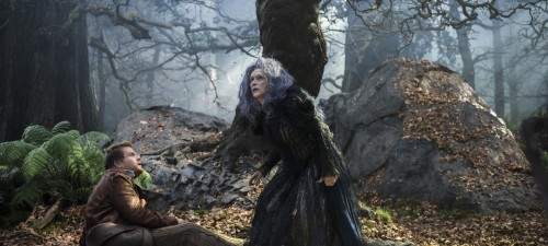 Screened Out – Into the Woods