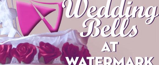 Watermark's Wedding Bells: Eduardo Montiel and Eric Mathis