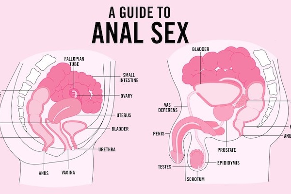 Guide to gay anal sex
